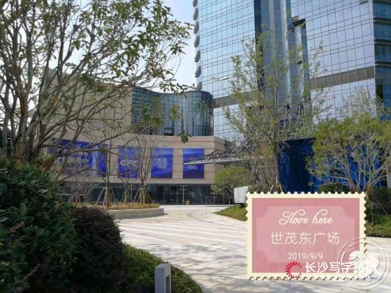 世贸环球金融中心